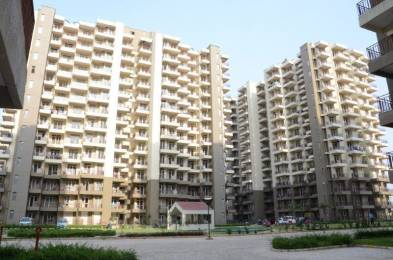 1550 sqft, 3 bhk Apartment in Builder Project Sector 24 Dharuhera, Dharuhera at Rs. 36.0000 Lacs