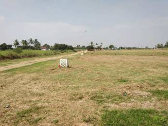 800 sqft, Plot in Builder Project New Siddhapudur, Coimbatore at Rs. 2.0000 Lacs