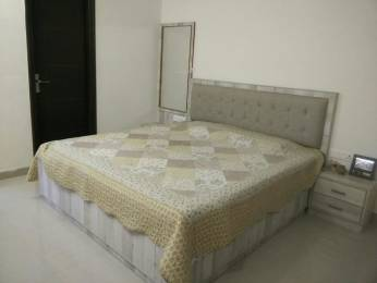 1850 sqft, 3 bhk Apartment in Builder Project Janata Colony, Jaipur at Rs. 25000