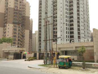 1145 sqft, 2 bhk Apartment in Builder Project Sector 137, Noida at Rs. 51.5250 Lacs