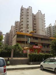 1885 sqft, 3 bhk Apartment in Builder Project Sector 77, Noida at Rs. 27000