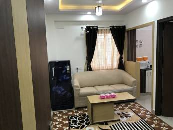 600 sqft, 1 bhk Apartment in Builder Project BTM Layout, Bangalore at Rs. 22000
