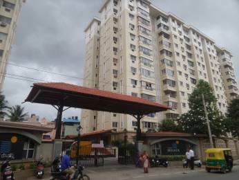 1500 sqft, 3 bhk Apartment in Builder Project Chikkalasandra, Bangalore at Rs. 1.1000 Cr
