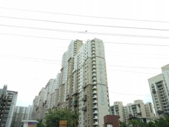 1960 sqft, 3 bhk Apartment in Builder Project Sector 100, Noida at Rs. 54.0000 Lacs