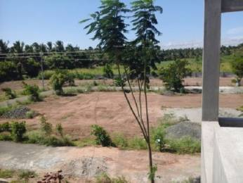 700 sqft, 2 bhk IndependentHouse in Builder Project Selvaraja Puram, Tiruppur at Rs. 23.5000 Lacs