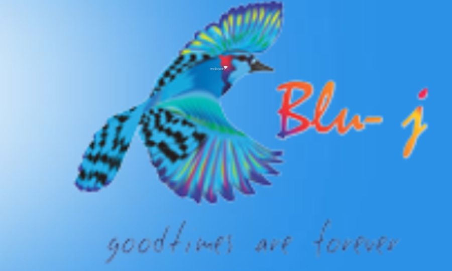Blu J Projects projects